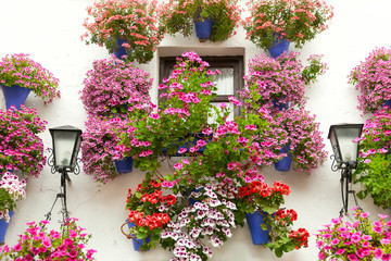 Typical Window decorated Pink and Red Flowers,  Spain, Mediterra