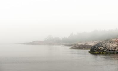 Coastal region during a foggy morning