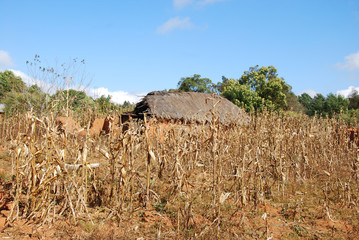 Houses and homes in the Village of Pomerini in Tanzania-Africa