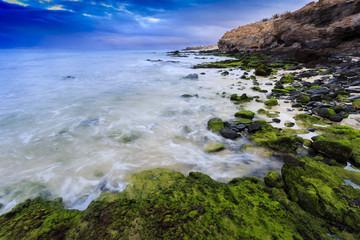 Fuerteventura coast