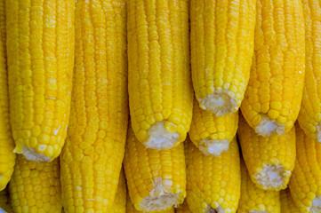 delicious yellow corn