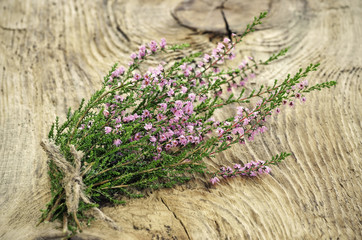 Calluna vulgaris (common heather) flowers on wooden surface