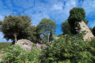 Corse, village de montagne abandonné