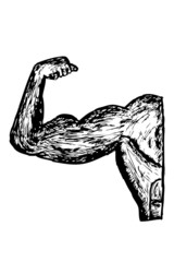 Hand Draw Sketch of Muscle Man