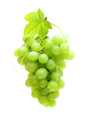 Green grape isolated