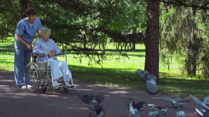 Patient Feeding Pigeons