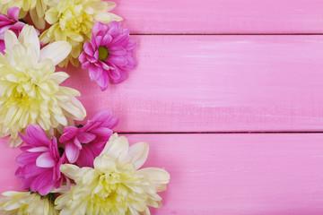 beautiful chrysanthemum flowers on pink wooden background