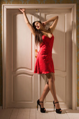 Sexual woman in a red lingerie