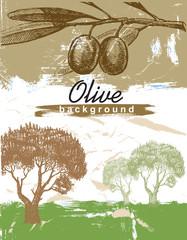 hand drawn olive