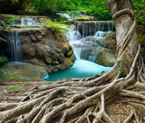 Fototapety banyan tree and limestone waterfalls in purity deep forest use n