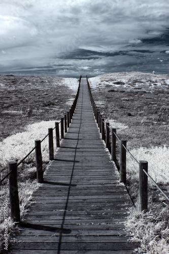 Dune walkway - 70561665