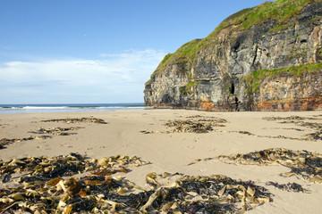 cliffs of Ballybunion on the wild atlantic way