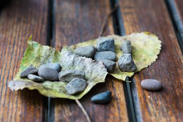 Blätter mit Steinen beschwert auf Gartentisch