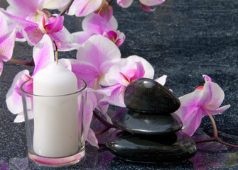 Beautiful branch pink orchid flower with back stones reflection