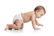 pretty crawling baby isolated