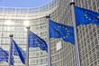 Leinwanddruck Bild - EU flags