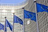 EU flags - 70568070