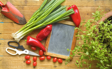 herbs, food ingredients, slate for recipes, cooking or gardening