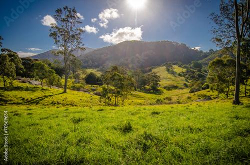 Landscape in Victore (Australia)