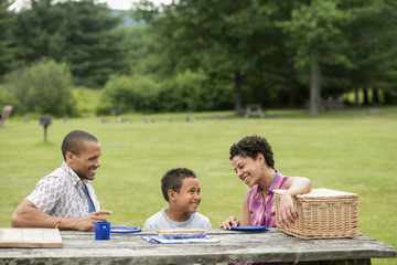 Family having a picnic in summer.