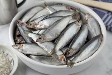Dish with raw European sprat