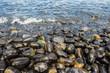 Leinwanddruck Bild - The black stone in the beach of southern Thailand