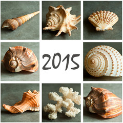 collage galets et coquillages  2015