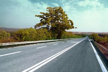 Strada vintage con albero