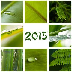 collage nature zen 2015