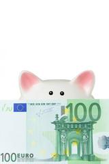 Sparschwein mit 100 Euro Geldschein