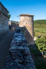 Remparts village Puycelsi