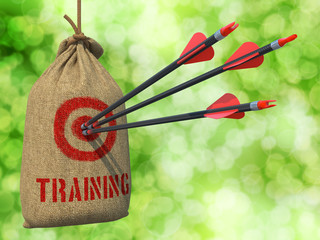 Training - Arrows Hit in Red Target.