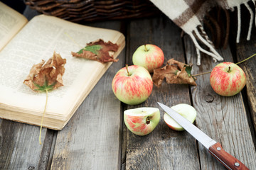Autumn (fall) still life with apples, book, warming blanket
