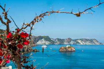 Faro dell'isola di Ponza con bouganville