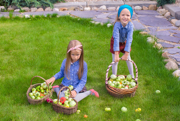 Two little happy girls with great autumn harvest of tomatoes in
