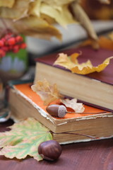 Still life with books and autumn leaves