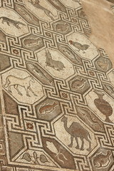 Mosaic Floor from Ancient Delphi