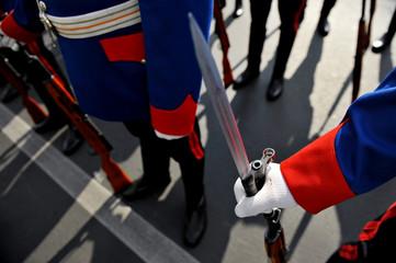 Bayonet detail during military parade