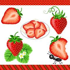 Strawberry Digital Clipart
