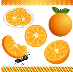 Orange Digital Clipart