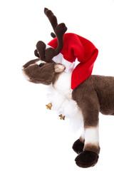 Rentier Rudolph freigestellt: Dekoration Weihnachten