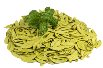 Italian pasta with spinach and basil
