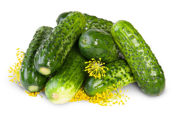 Fresh Cucumbers And Dill