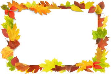 Herbst 93