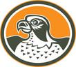 Falcon Head Side Oval Retro