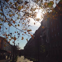 Sunny autumnal day and street in Saint-Petersburg, Russia
