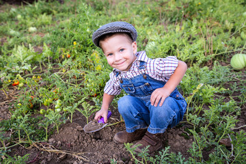 Little boy digging in garden