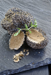 rare and expensive black truffle