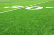 canvas print picture - Football field