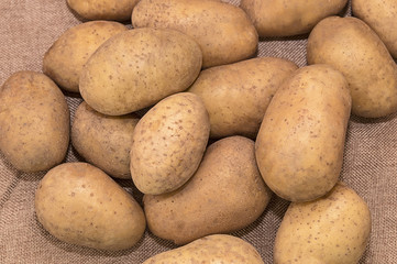 Young potatoes